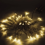 ALEKO 50 LED 16 Foot Battery Operated Warm White Color Lights